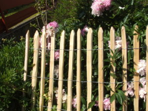 Pale fencing 6